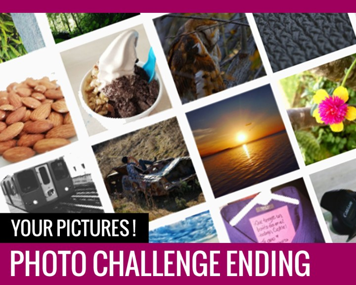 Photo Challenge Ending – Your Pictures!