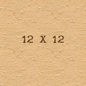 12 X 12