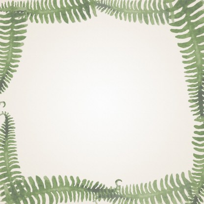 African jazz fern border file