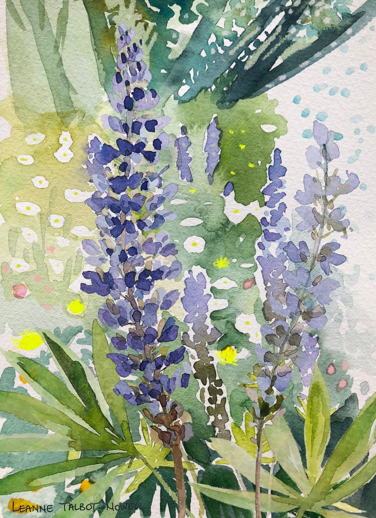 Alpine lupins, watercolour by Leanne