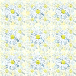 Daisy petals by paperbrush