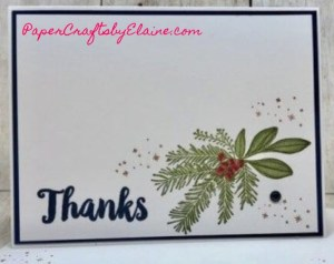 Thank you cards, Christmas Countdown stamp set, Make cards year round,
