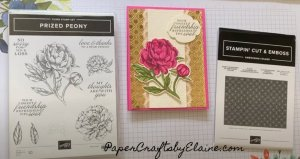 Prized Peony Stamp set, Dainty 3D embossing Folder, Coloring Prized Peony bundle, How to color the prized peony, making gift cards, making greeting cards, all occasion cards, Handmade greeting cards, IN color  Magenta Madness on Prized Peony flower,