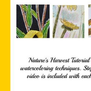 Nature Harvest Tutorial