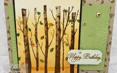 How to use one stamps set year round