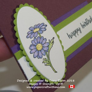 Close up of gerbera from the In Every Season Stamp Set from Stampin' Up coloured with watercolour pencils and fixed to a gift card envelope.