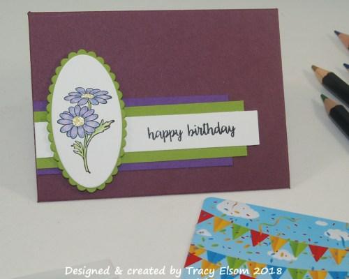 GC179 Gerbera Birthday Gift Card Envelope