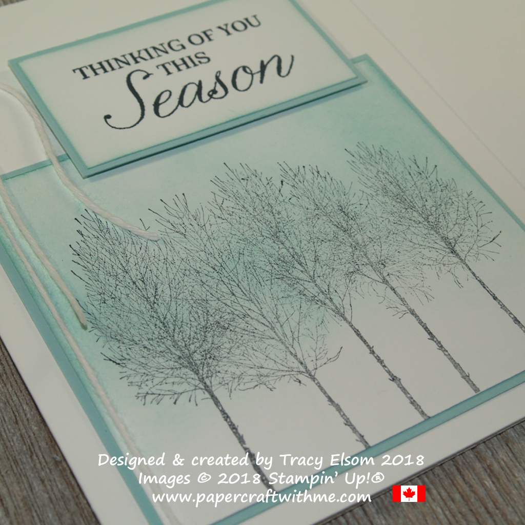 Close up of simple sponged thinking of you this season card created using the Winter Woods Stamp Set from Stampin' Up!