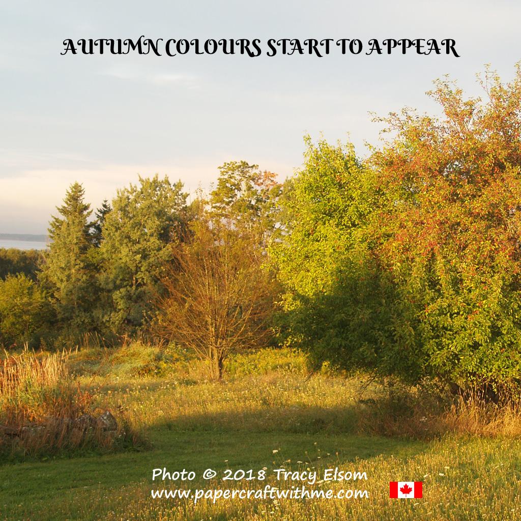 Early autumn colours in Nova Scotia