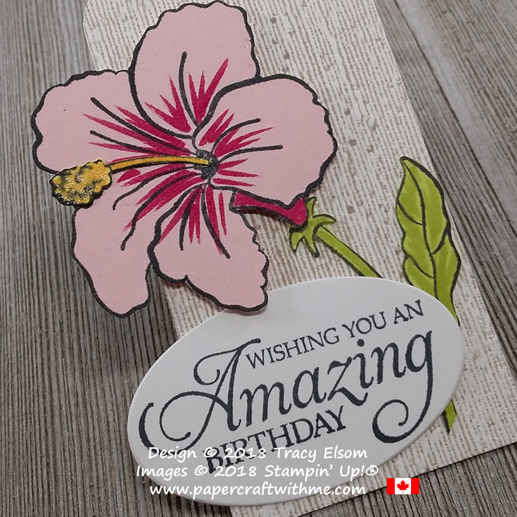 Close up of large layered birthday gift tag with hibiscus image from the Humming Along Stamp Set from Stampin' Up!