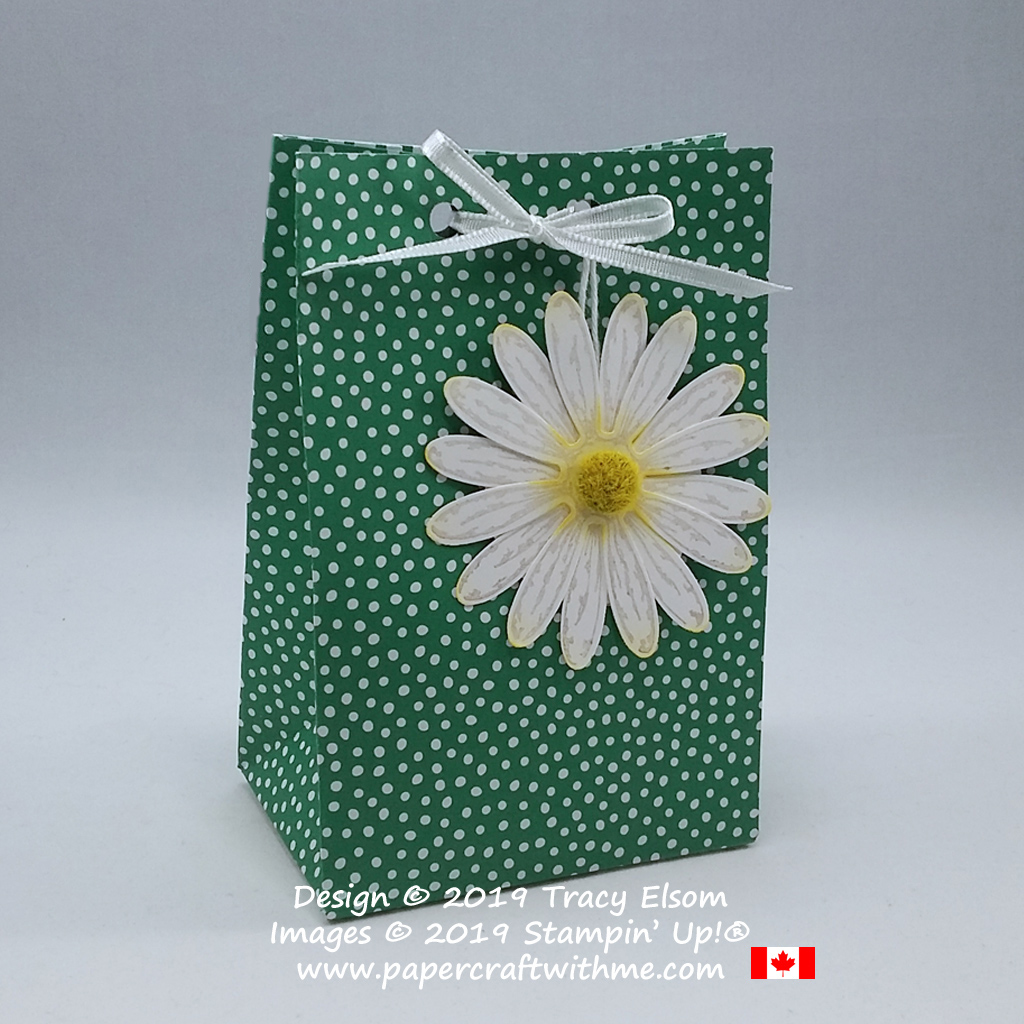 Gift bag created using the Gift Bag Punch Board, with daisy tag using the Daisy Delight Stamp Set and Daisy Punch from Stampin' Up!