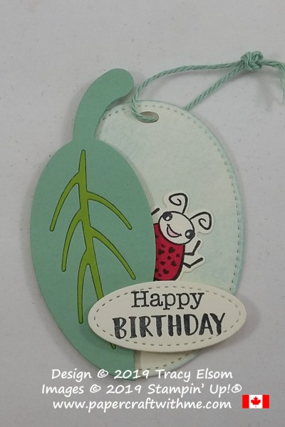 Ladybird / ladybug birthday gift tag created using the Wiggle Worm Stamp Set and coordinating Wiggly Bugs Dies from Stampin' Up!