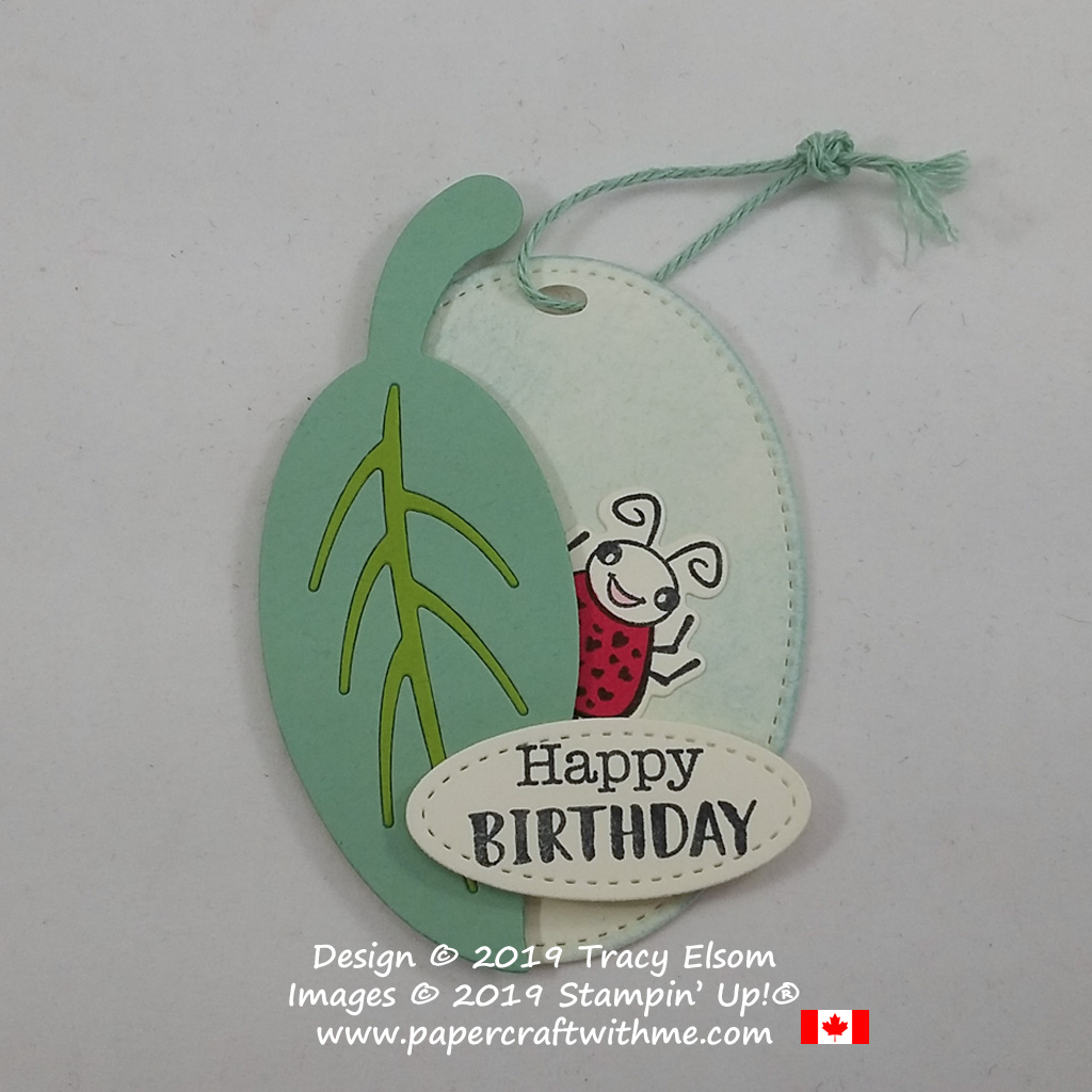 Ladybird / ladybug birthday gift tag crated using the Wiggle Worm Stamp set and coordinating Wiggly Bugs Dies from Stampin' Up!