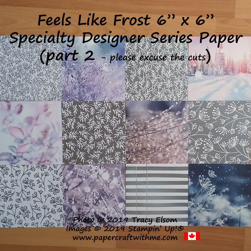 "Feels Like Frost 6"" x 6"" Designer Series Paper from Stampin' Up! (part 2) - 4 sheets each - photo images on one side, silver foil/white design on the reverse. (already cut one design before I remember to photographs them, oops!)"