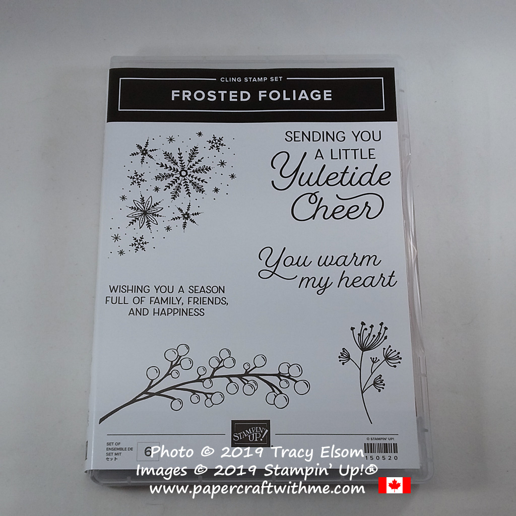 Frosted Foliage Stamp Set from Stampin' Up! #papercraftwithme