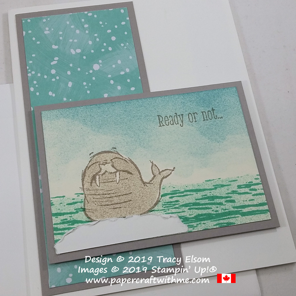 """Birthday card with """"Ready or not... it's your birthday"""" sentiments from the We'll Walrus be Friends Stamp Set from Stampin' Up! #papercraftwithme"""