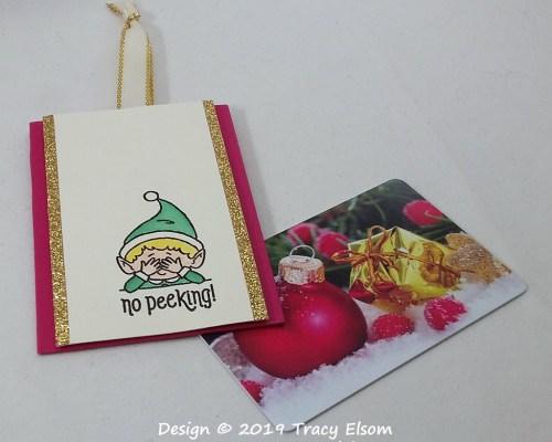 GC211 No Peeking Gift Card Holder Tag