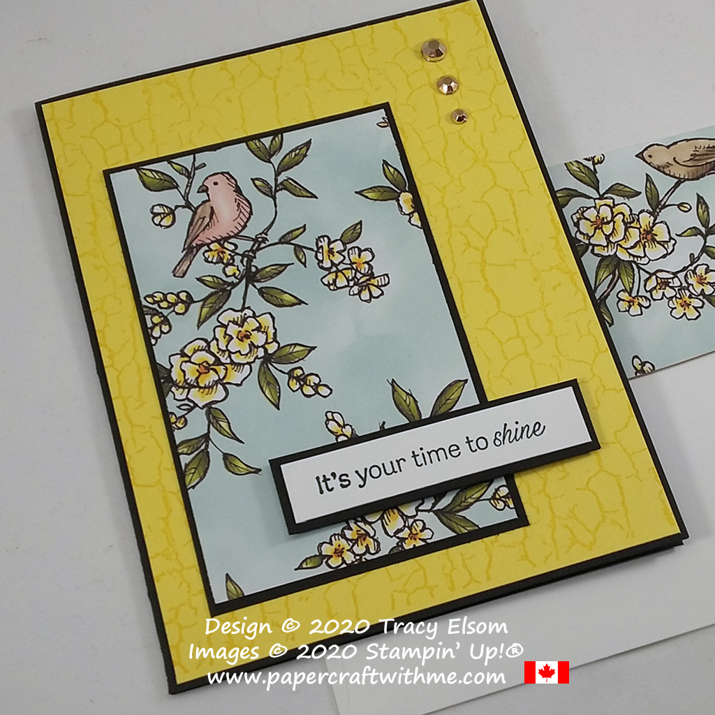 """It's your time to shine"" card with bright Pineapple Punch background, created using the Daisy Lane and Crackle Paint Stamp Sets and Bird Ballad paper from Stampin' Up! #simplestamping #papercraftwithme"