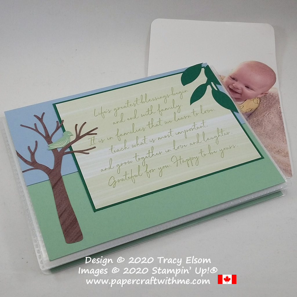 """Simple photo album project created using the April 2020 Paper Pumpkin kit """"My Wonderful Family"""" from Stampin' Up! #papercraftwithme"""