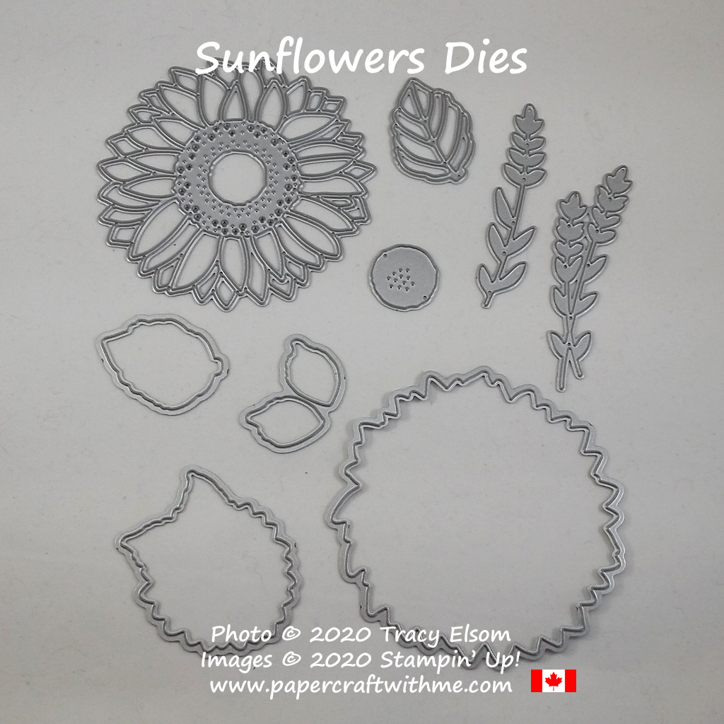 Sunflowers Dies from Stampin' Up! #papercraftwithme
