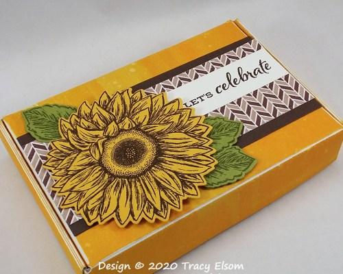 "BB69 Sunflower ""Let's Celebrate"" Box"