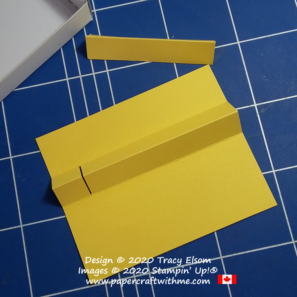 Simple insert for a mini Paper Pumpkin box. #papercraftwithme