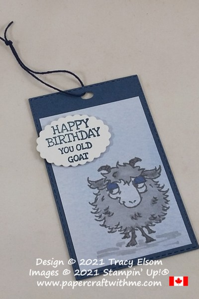 Fun birthday gift tag created using the Way To Goat Stamp Set from Stampin' Up! #papercraftwithme
