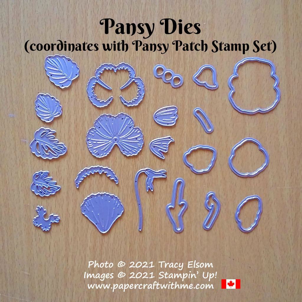 The Pansy Dies from Stampin' Up! can be used by themselves but they also coordinate with the Pansy Patch Stamp Set and Pansy Petals DSP paper. #papercraftwithme