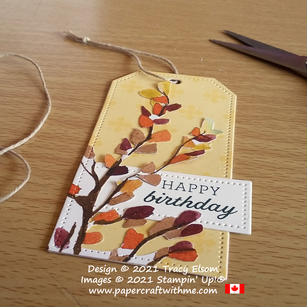 Gender neutral birthday gift tag created using Beauty Of The Earth paper and Tailor Made Tags Dies from Stampin' Up! #papercraftwithme