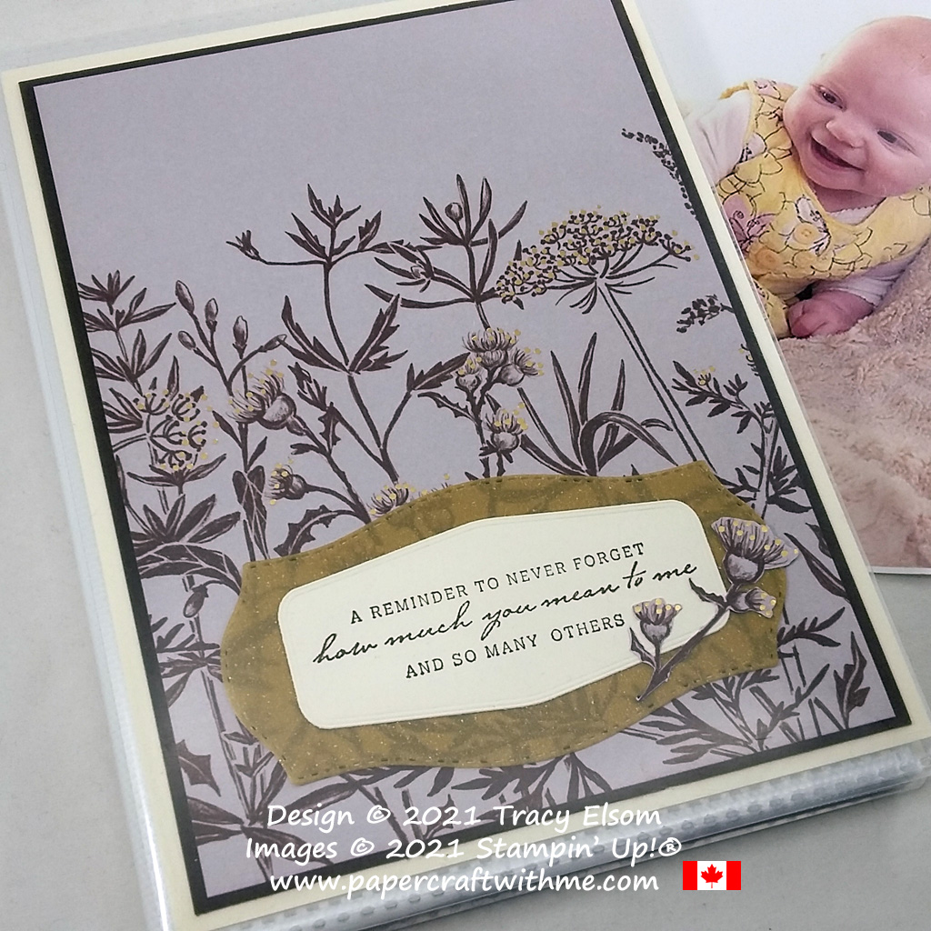 """""""Reminder to never forget"""" on this 4"""" x 6"""" pocket photo album decorated using the Blackberry Beauty paper and Nature's Harvest Stamp Set from Stampin' Up! #papercraftwithme"""