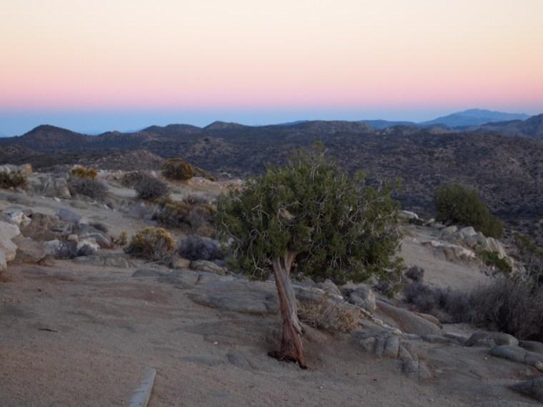 sunset Keys View Joshua Tree National Park