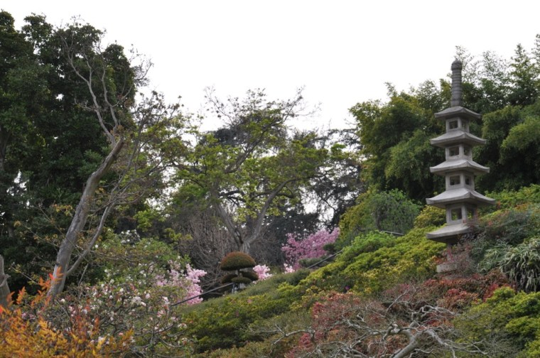 Japanese Garden Pagoda Huntingdon Library spring blossom