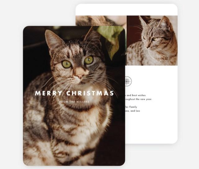 Photo Impression Holiday Cards Black