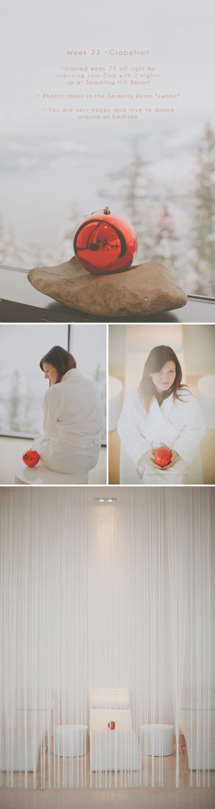 Weekly Pregnancy Photo Journal - ©The Paper Deer Photographer