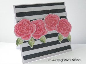 haute stripe pink an roses