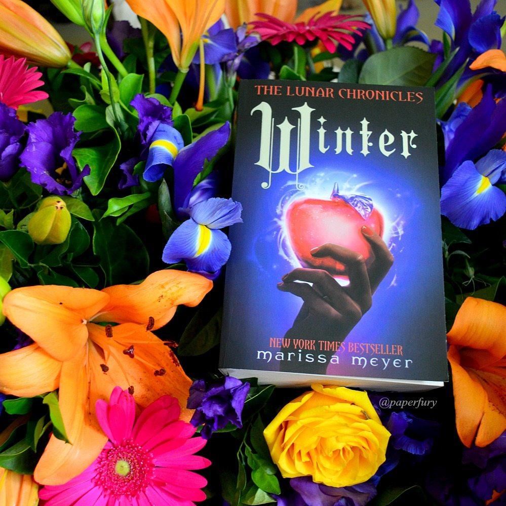 winter + flower garden