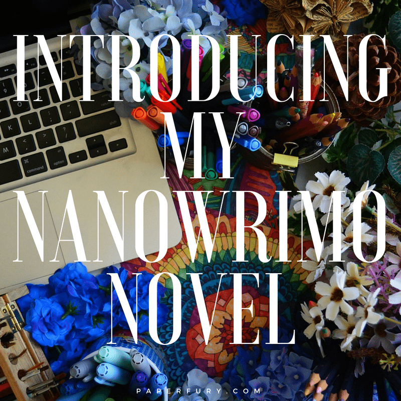 nanowrimo-novel