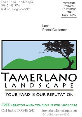 Tamerlano direct mail postcard-1