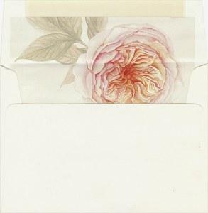 envelope liner printing