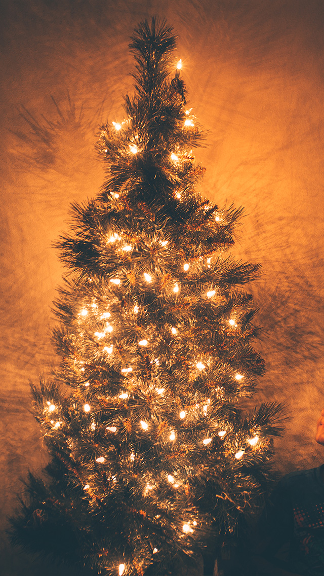 Nv79 Christmas Tree Light Holiday Tree Nature Wallpaper