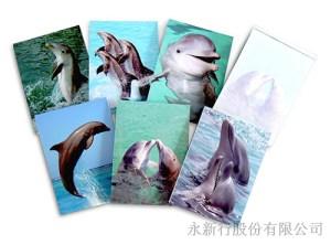動物便條系列海豚便條紙,2