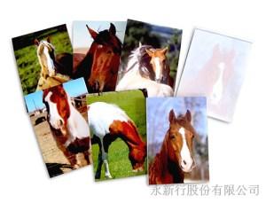 動物便條系列馬便條紙-便條紙_M-14420,2