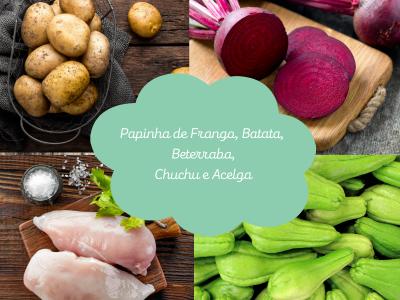 Papinha de Frango, Batata, Beterraba, Chuchu e Acelga