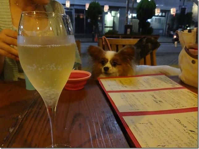 スパークリングワインとアリア