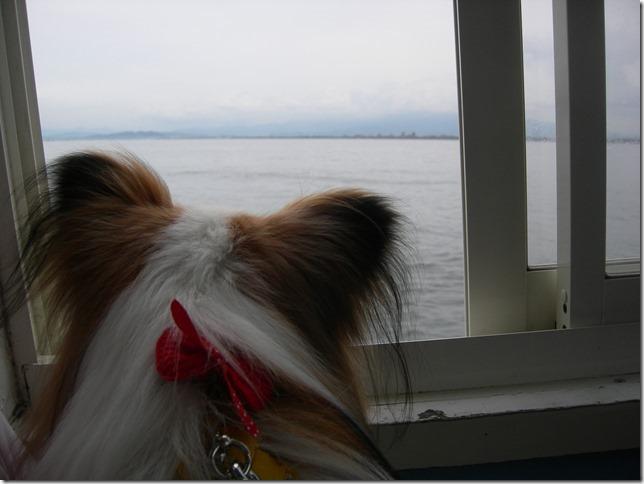 海を眺めるアリア