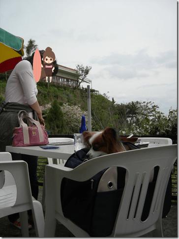 ハルミ食堂テラス席