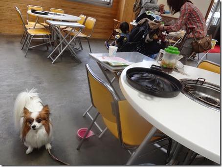 ペットと遊べる千葉県のマザー牧場の屋内バーベキュー施設
