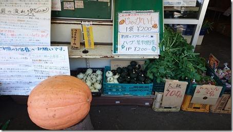 北軽井沢のペットと野菜果物狩りできる石田観光農園の店頭販売
