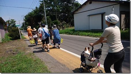 北軽井沢のペットと野菜果物狩りできる石田観光農園で農場に歩いていく人たち