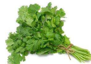 Coriander-leaves-Kothimeera-180414
